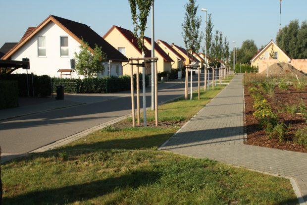 Eigenheime in Schönau. Foto: Ralf Julke