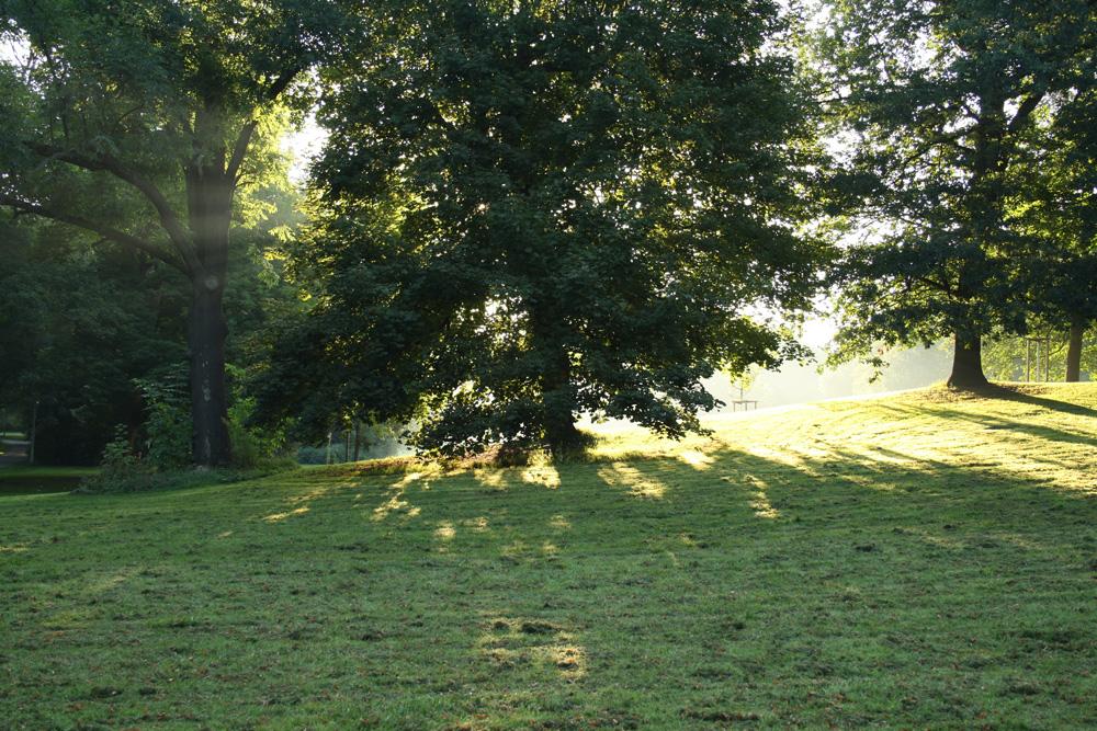 Clara-Zetkin-Park. Foto: Ralf Julke
