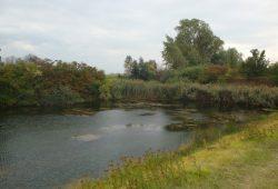 Das aktuelle Ende des Elster-Saale-Kanals. Foto: Gernot Borriss