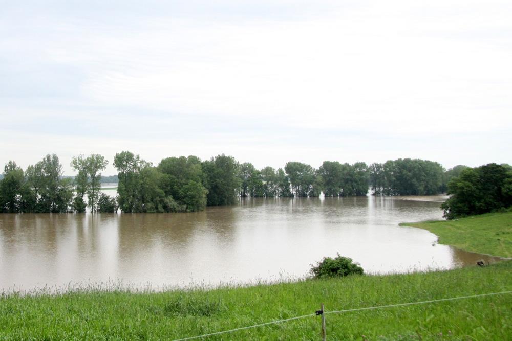 Hochwasser 2013 bei Groitzsch. Foto: Matthias Weidemann