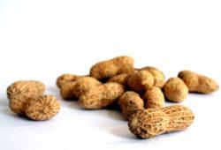 Peanuts. Foto: Ralf Julke
