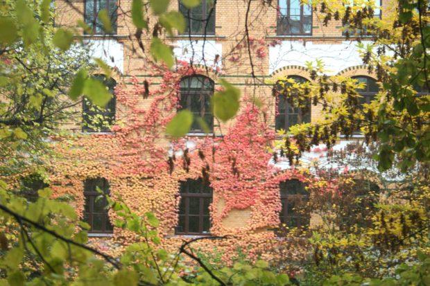 Der Herbst kommt, ein paar Lehrer fehlen ... Foto: Ralf Julke