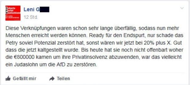 """Freude über die Zusammenlegung der Seiten und Kritik an Petry. Screen Gruppenseite """"Die PARTEI"""""""