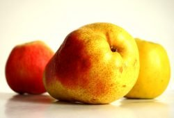 Gesunde Ernährung gehört auch im Alter dazu. Foto: Ralf Julke