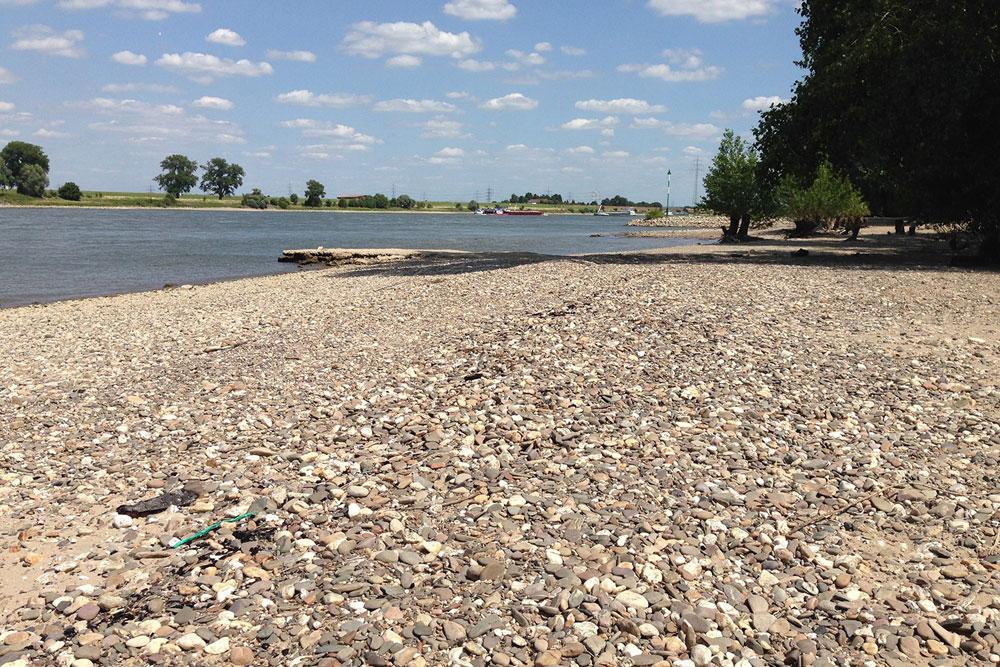 Niedrigwasserperiode im Sommer 2015 am Rhein bei Krefeld. Foto: Andreas Marx/UFZ
