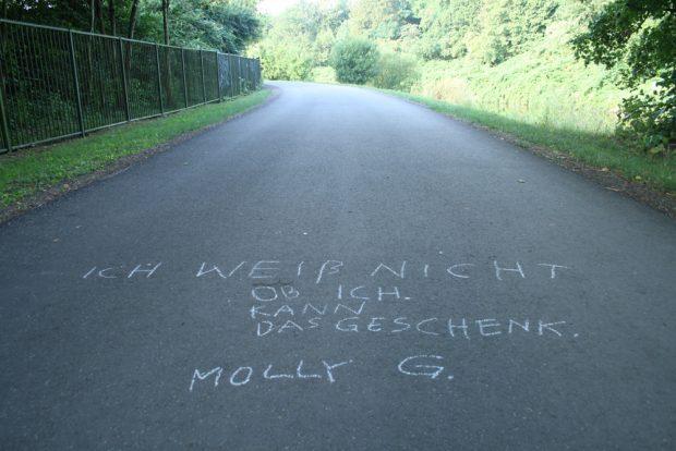 Radweg an der Weißen Elster. Foto: Ralf Julke