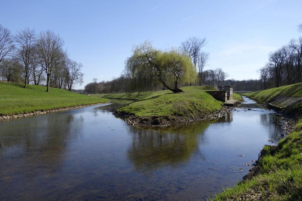 Zwei der zahlreichen Leipziger Flüsse: Hier fließt die Kleine Luppe (rechts) in die Nahle. Foto: NABU Sachsen