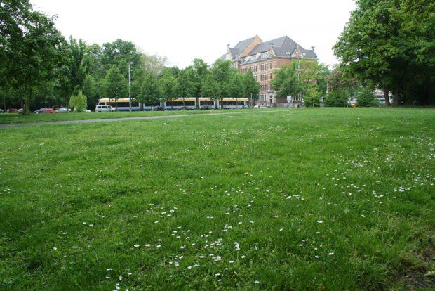 Beliebteste Liegewiese in der Südvorstadt: der Alexis-Schumann-Platz. Foto: Ralf Julke