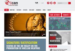 Die Ican-Homepage. Screenshot: L-IZ