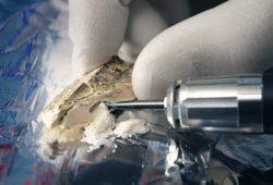 Bohren am Knochenfragment: Forscher benötigen nur winzige Mengen Knochenpulver für die Erbgutanalyse. Foto: Frank Vinken, Max-Planck-Institut für evolutionäre Anthropologie