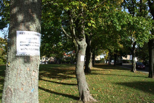 Plakate an den Bäumen: Rettet unsere Wiese! Foto:Ralf Julke