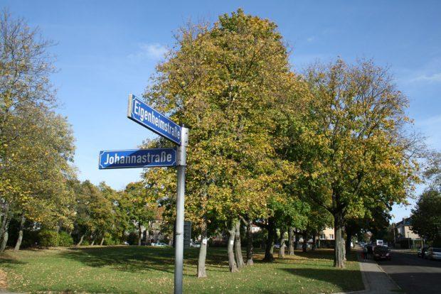 Die Grünfläche in der Eigenheimstraße. Foto: Ralf Julke