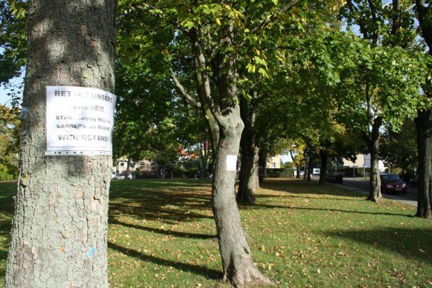 Die Grünfläche in der Eigenheimstraße in Dölitz. Foto: Ralf Julke