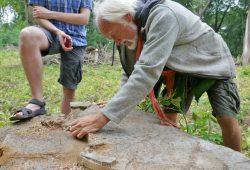 Bernd Gerken zählt die Jahresringe einer im Auwald gefällten Esche. Foto: Frank Willberg