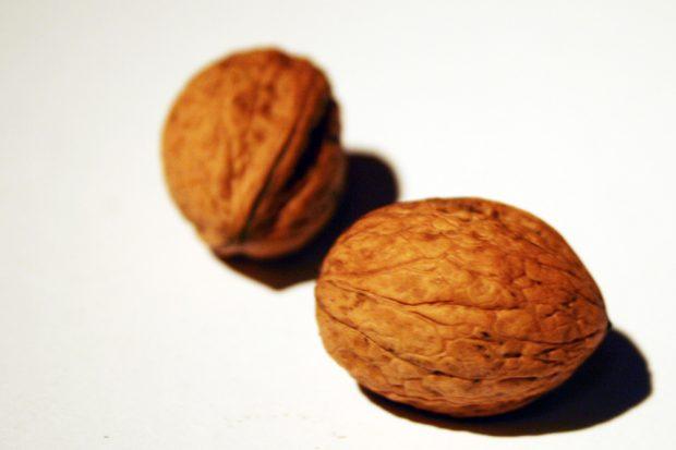 Wie knackt man diese Nüsse? Foto: Ralf Julke