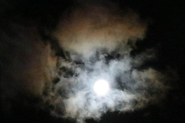 Eine Vollmondnacht - wie immer zu Silvester. Foto: L-IZ.de