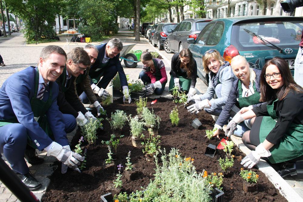 Blumenpflanzung an der umgebauten Könneritzstraße. Foto: Ralf Julke