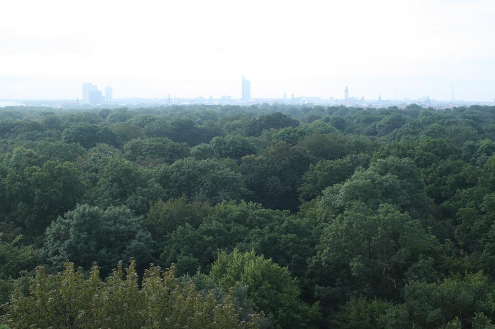 Von oben schön grün: der Leipziger Stadtwald. Foto: Ralf Julke