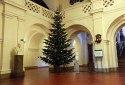 Weihnachtsbaum im Neuen Rathaus. Foto: L-IZ.de