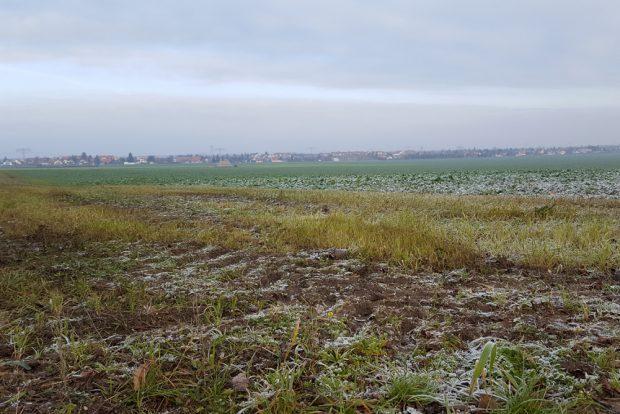 Die Felder bei Rückmarsdorf. Foto: Marko Hofmann