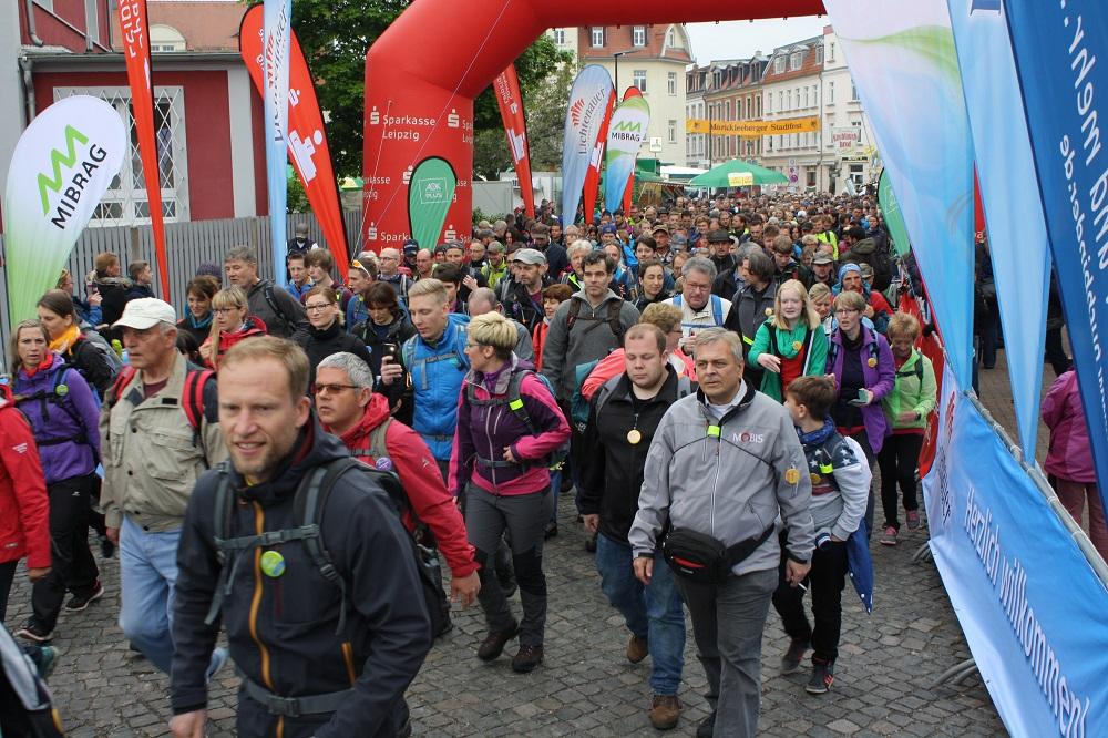 7-Seen-Wanderung, Foto: Sportfreunde Neuseenland