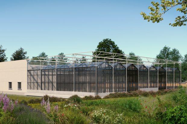 Das Forschungsgewächshaus im Botanischen Garten. Visualisierung: GEFOMA GmbH