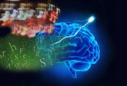 Das Pendant des Broca-Areals in der rechten Hirnhälfte verarbeitet statt der Grammatik von Sprache die von Musik. Foto: istock adapted by MPI CBS