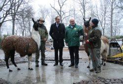 OBM Burkhard Jung und Zoodirektor Dr. Jörg Junhold beim Besuch auf der Südamerika-Baustelle. Foto: Ralf Julke