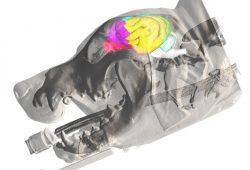 Illustration der Lage verschiedener Gehirnareale im Hund, Foto: Illustration: Dr. med. vet. Björn Nitzsche