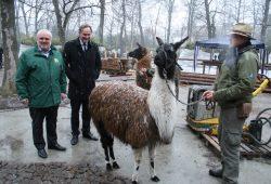 """Besuch auf der Zoo-Baustelle """"Südamerika 1"""". Foto: Ralf Julke"""