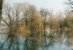 Foto: Hannes Hansmann