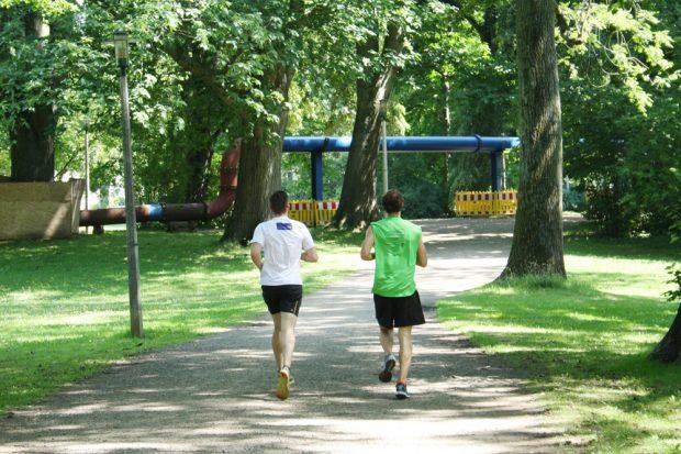 Erholen im Clara-Zetkin-Park. Foto: Ralf Julke