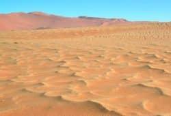 Unerwartete Verwandtschaft: Megarippel (vorne) und Sanddünen (hinten) Foto: Dr. Hezi Yizhaq