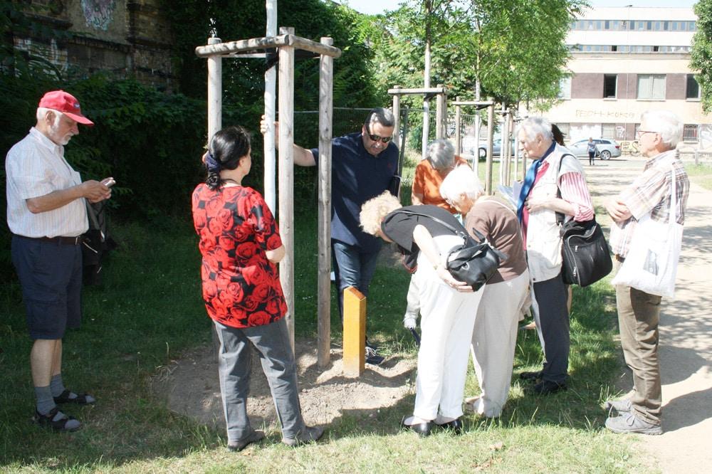 Eine Robinie im Lene-Voigt-Park erinnert jetzt an Lene Voigt. Foto: Ralf Julke