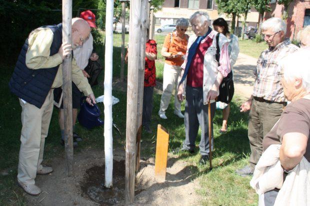 Wolfgang U. Schütte, langjähriger Vorsitzender der Lene-Voigt-Gesellschaft, gießt die Lene-Voigt-Robinie. Foto: Ralf Julke