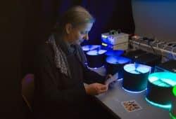 Verblassende Pigmente, Die Physikerin Dr. Beate Villmann im Lichtlabor der HTWK Leipzig, Foto: HTWK