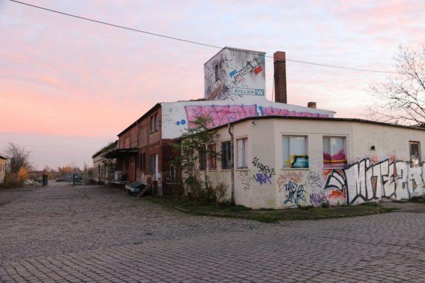 Entlang der Zufahrtsstraße auf dem Gelände des Freiladebahnhofs. Foto: L-IZ.de