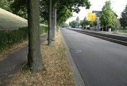 Geh-/Radweg am Völkerschlachtdenkmal. Foto: Ralf Julke