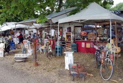 Ein Tag auf dem Flohmarkt an der Pferderennbahn. Foto: Marko Hofmann
