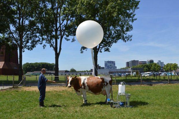 Abb.: Ottonie von Roeder & Anastasia Eggers, Cow&Co, 2017