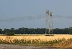 Ein extrem zeitig abgeerntete Felder bei Wiederau (Zwenkau) vor Leipzig. Foto: Michael Freitag