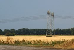 Abgeerntete Felder bei Wiederau. Foto: Michael Freitag