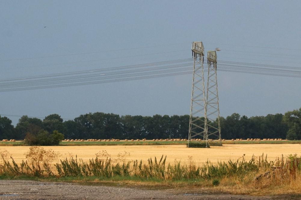 Ein extrem zeitig abgeerntetes Feld bei Wiederau (Zwenkau) vor Leipzig. Foto: Michael Freitag