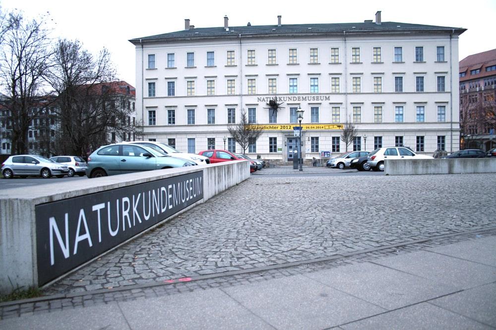 Das Naturkundemuseum in der Lortzingstraße. Foto: Ralf Julke