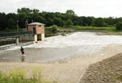 Das Rosentalwehr bei größerem Wasserangebot. Foto: Ralf Julke