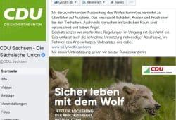 Der Wolf in der CDU-Kampagne bei Facebook. Screen Facebook, CDU Sachsen