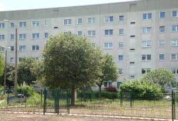 Der Abriss schuf in Grünau auch Platz für beliebte Bürgergärten. Foto: Gernot Borriss