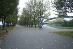 Die Lindenallee an der Arena markiert den Verlauf der Alten Elster. Foto: Ralf Julke