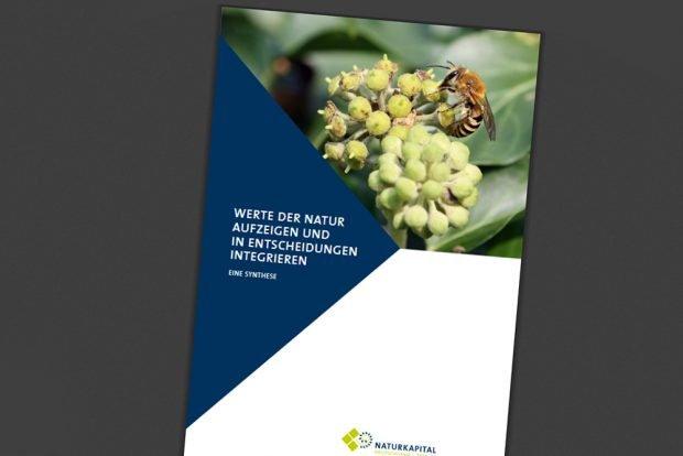 """TEEB-Studie """"Werte der Natur aufzeigen und in Entscheidungen integrieren"""". Cover: Naturkapital"""