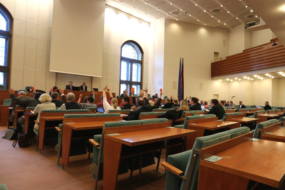 Abstimmung im Stadtrat. Foto: L-IZ.de